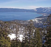 Lake Tahoe From Maggie's Peaks by Jared Manninen