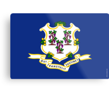 Connecticut State Flag  Metal Print