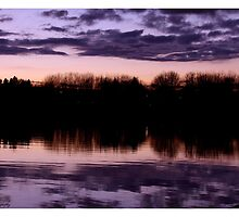 Evening refletion by Elaine Carty