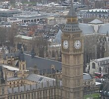 Parliament from the skies by Pedro de Sa