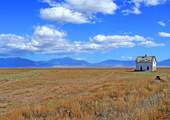 History on the Plains by Graeme  Hyde