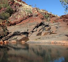 Hamersley Gorge - pool   (Pilbara, WA) by gaylene
