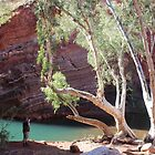 Hamersley Gorge, with photographer by gaylene