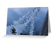 Ice Crystals on Web Greeting Card
