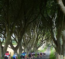 Cycling the Dark Hedges by Ludwig Wagner