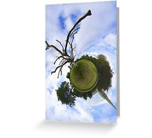 Dead Elm Tree in Brooke Park, Derry Greeting Card