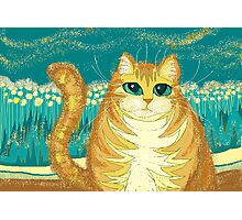Cat And Pollen Photographic Print