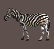 a slice of zebra Kids Clothes
