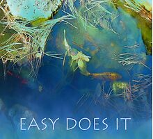 Easy Does It Koi Pond by serenitygifts
