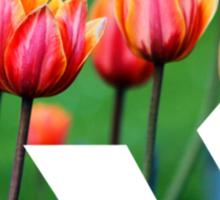 Berlin Bear - Tulips Sticker