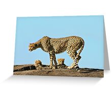 Under Mom's watchful eye Greeting Card