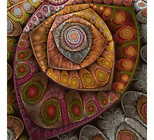 Spiral dynamics Photographic Print