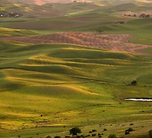 Palouse Sunset by Helen K. Passey