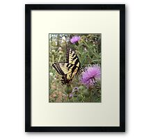 Out For A Drink Framed Print