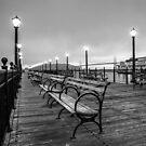 Misty Morning by Radek Hofman