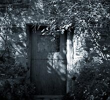 Cottage Door, Hepburn Springs by Maggie Hegarty