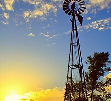 Texas Windmill  by Danny Key