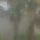 Monsoon  by John  Kapusta