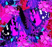 Abstract Butterfly by Saundra Myles
