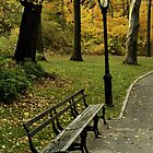 Fall In New York (Central Park) by Randy  Le'Moine