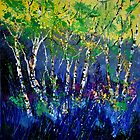 Birch trees by calimero