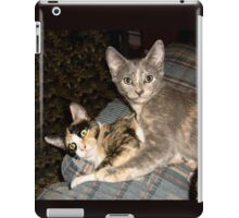 Calie and Misty at 14 weeks old iPad Case/Skin