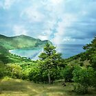 Chatam Bay/Union Island by globeboater