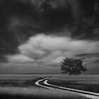 Road by yurybird