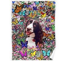 Lady in Butterflies - Brittany Spaniel Poster
