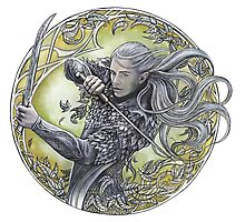 Warrior of Mirkwood Photographic Print