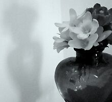 Black and White Still Life - with Shadow^ by ctheworld