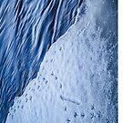 Footprints [iPad case] by Matti Ollikainen