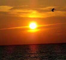 Just A Sunset? by Emphias
