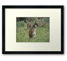 Can I look yet? Framed Print