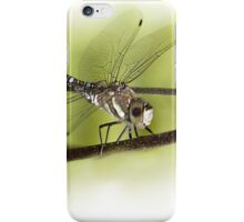 ...its a small World ..the 'libella /dragonfly'  iPhone Case/Skin