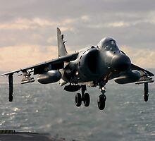 Sea Harrier Hovering by captureasecond