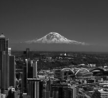 Mt Rainier BW  by Steve St.Amand
