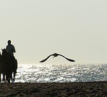Fallen Saltwater Cowboy by kimbarose