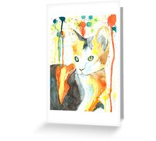 Donna's Cat Greeting Card