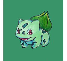 Bulbasaur Photographic Print