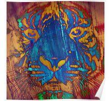 Tiger_8527 Poster