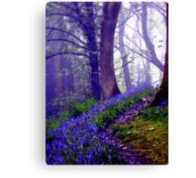 Bluebells in the Forest Rain Canvas Print