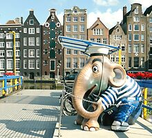 An Elephant in Amsterdam by UrsulaRodgers