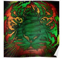 Tiger_8535 Poster