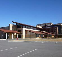Our New Convention Center by WildestArt