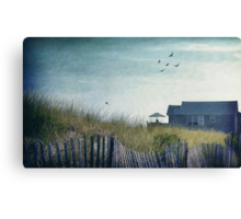 Strange Birds Canvas Print