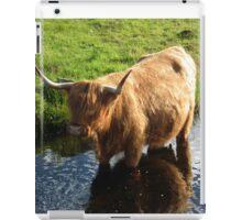 Duirinish Highland Coo! iPad Case/Skin