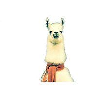 Creepy Alpaca  by godlymagikarp