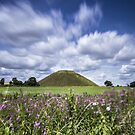Silbury Hill Summer by Angie Latham