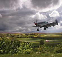 Stormy Landing by Pauline Tims